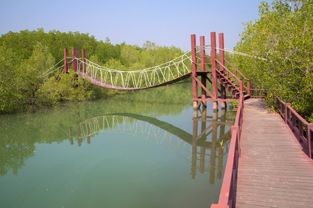 hua: Hanging wooden tourist path in the mangroves. The surroundings of Hua Hin, Southern Thailand