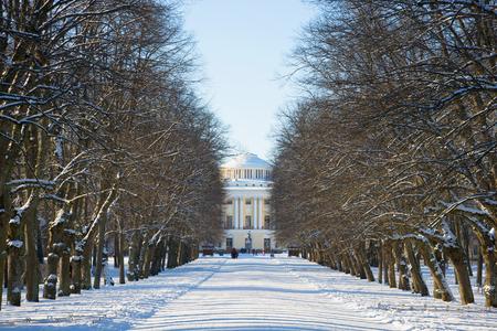 leningrad: Winter alley leading to the Pavlovsk Palace. Pavlovsk palace park, the surroundings of St. Petersburg Stock Photo