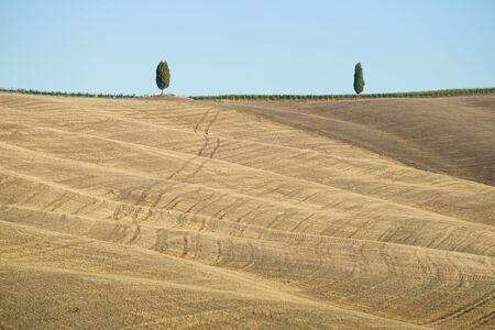 A sloping hilly field on a sunny day. Landscape of Tuscany, Italy Stock fotó
