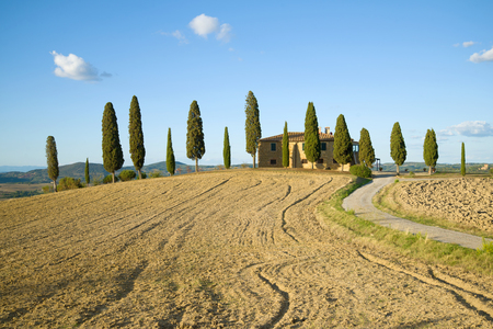 A traditional rural landscape on a sunny September day. Tuscany, Italy