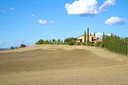 Rural field sowing on a sunny September day. Italy Stock Photo