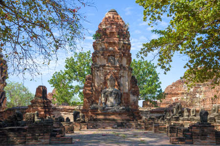 On the ruins of the ancient Buddhist temple Wat Mahathat. Ayutthaya, Thailand