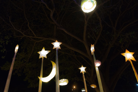 A starlight lamp beneath a tree in a park.