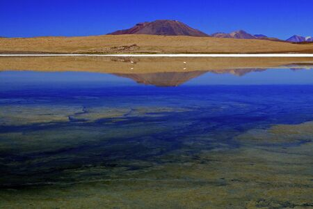 Laguna Canapa, Bolivia. Stock Photo
