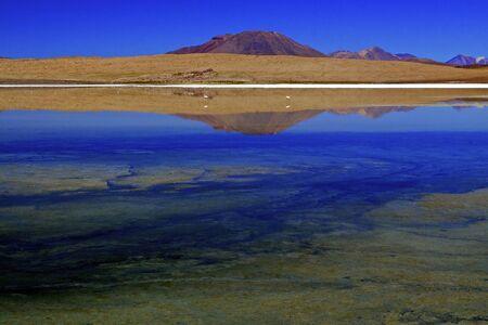 Laguna Canapa, Bolivia. photo