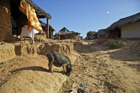 Village by Tsiribihina river, Madagascar