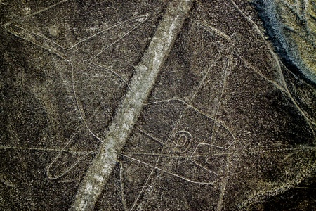Whale  The Nazca Lines are a series of geoglyphs located in the Nazca Desert, Peru  photo