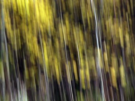 background Stock Photo - 17639247