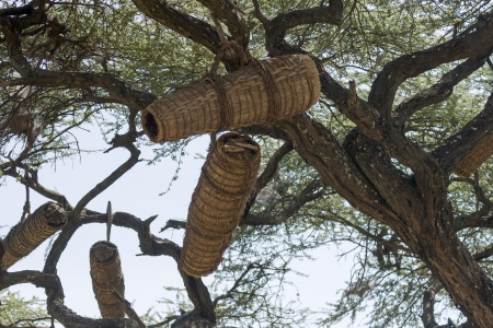 Honey baskets hanging in the tree, Konso, Ethiopia