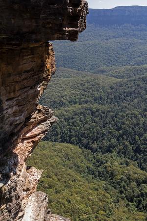 bushwalk: Blue mountains, Australia