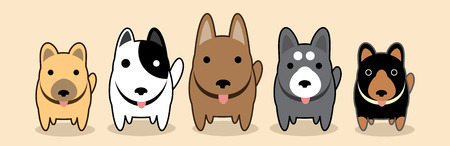 the gang: Dogs gang vector cartoon cute illustration.