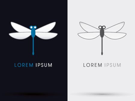 dragonfly: Dragonfly vector. Illustration