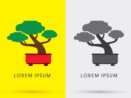 bonsai tree: Bonsai tree abstract symbol icon graphic vector .