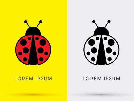 mariquitas: Logo mariquita escarabajo gráfico vectorial. Vectores