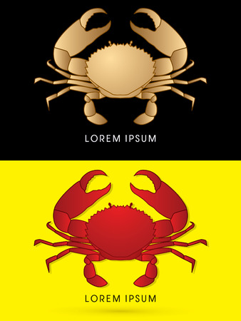 pincers: Luxury , Big Crab and big pincers, designed using gold and red colors, graphic vector.