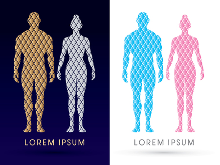 human body silhouette: Male and female Anatomy, Human body, full body, designed using gold and silver square, graphic vector.