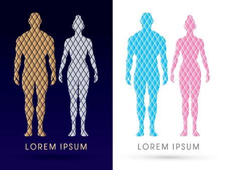 cuerpo entero: Varón y hembra anatomía, cuerpo humano, de cuerpo entero, diseñados utilizando el oro y la plata cuadrada, gráfico de vector. Vectores