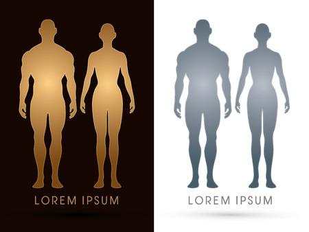 Mannelijke en vrouwelijke Anatomie, Menselijk lichaam, full body, ontworpen met behulp van goud en zilver kleuren, grafische vector. Stock Illustratie