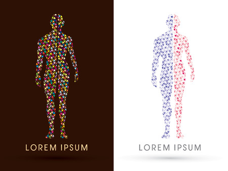 Half body , Male and female Anatomy, designed using colorful triangle mosaic, graphic vector.