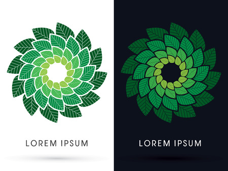 spin: Luxury leaf, spin, swirl, cycle, graphic, vector. Illustration