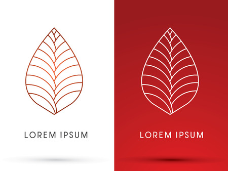 leaf shape: Outline leaf, Lotus shape, graphic vector.