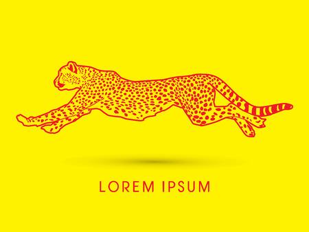 acinonyx jubatus: Outline Cheetah running, side view, graphic vector.