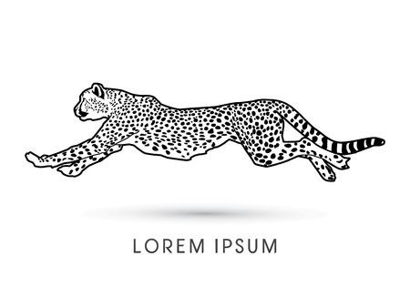 acinonyx jubatus: Silhouette, Cheetah running, side view, graphic vector.