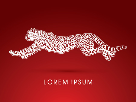 Cheetah running, side view, graphic vector.