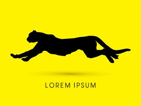 jaguar: Silueta del guepardo, pantera, gráfico de vector. Vectores