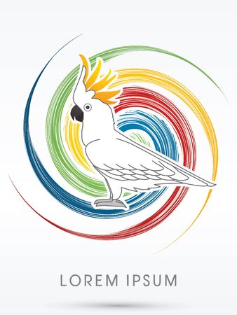 spin: Cockatoo, on spin circle line background, graphic vector.