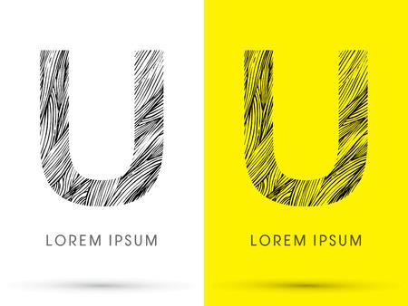 venation: U ,Font , hair line, graphic vector. Illustration