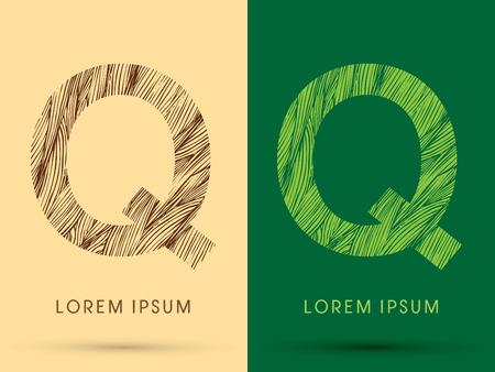 venation: Q, Font, concept line stroke , wood and leaf, grass, graphic vector.