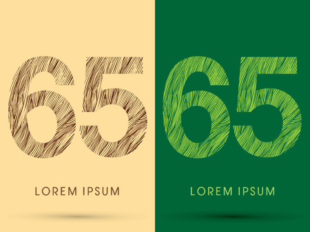 65, Font, concept line stroke , wood and leaf, grass, graphic vector. Illustration