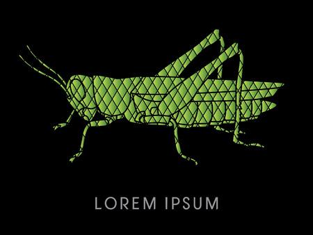 locust: Grasshopper, designed using square pattern graphic vector.