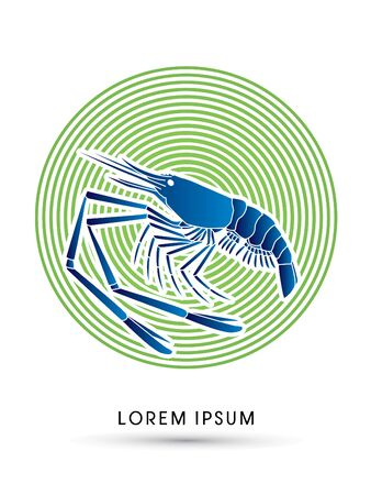 macrobrachium: Giant freshwater prawn, shrimp, designed using blue color on line cycle graphic vector.