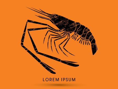 prawn: Giant freshwater prawn, shrimp, designed using grunge brush graphic vector.