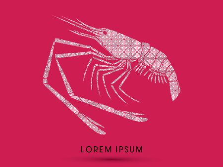 macrobrachium: Giant freshwater prawn, shrimp, designed using square pattern graphic vector. Illustration