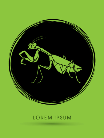 mantis: Mantis, Mantodea grasshopper designed using grunge brush graphic vector