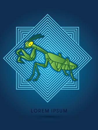 mantis: Mantis, Mantodea grasshopper on line square background graphic vector