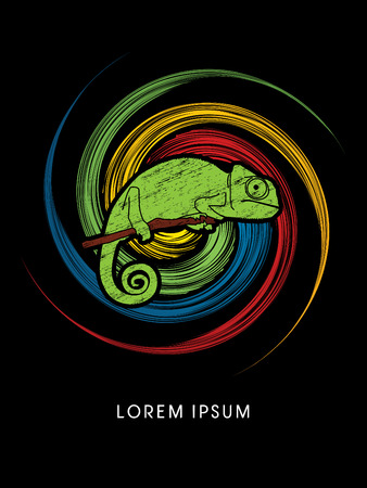 veiled: Chameleon designed using grunge brush on spin cycle background graphic vector.