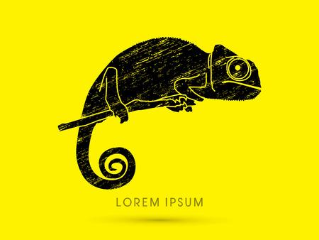 veiled: Chameleon designed using grunge brush graphic vector.