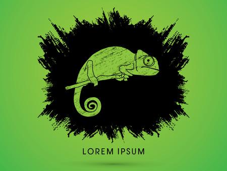 veiled: Chameleon on grunge brush graphic vector.