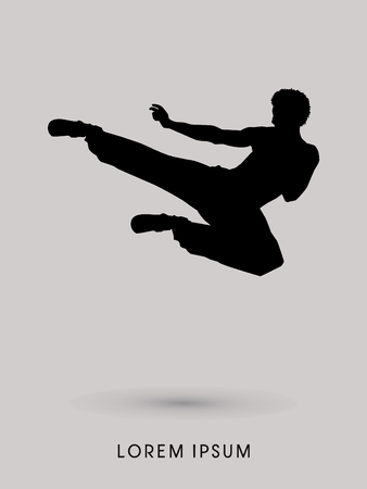 flying man: Kung fu, Karate jump kick , silhouette graphic vector.