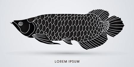 arowana: Black Arowana Fish, graphic vector.