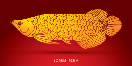 Yellow Arowana Fish, graphic vector.