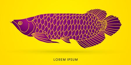 Purple Arowana Fish, graphic vector.