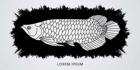 arowana: Arowana Fish, Designed on splash grunge brush graphic vector. Illustration