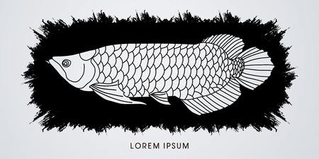cichlid: Arowana Fish, Designed on splash grunge brush graphic vector. Illustration
