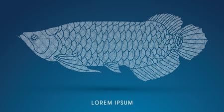 arowana: Arowana Fish, Designed using line geometric pattern graphic vector.