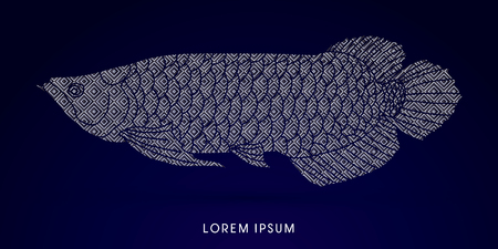 cichlid: Arowana Fish, Designed using luxury geometric pattern graphic vector.